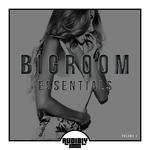 Bigroom Essentials Vol 1
