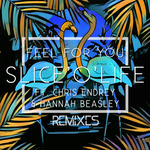 Feel For You (feat Chris Endrey/Hannah Beasley) (Remixes)