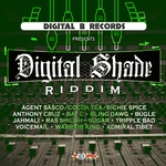 VARIOUS - Digital Shade Riddim (Front Cover)