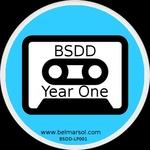 BSDD Year One