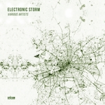 Electronic Storm