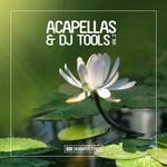 Enormous Tunes - Acapellas & DJ Tools, Vol  2