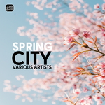 LEV KITKIN/ANTHONY MEA/MATTHIEU B/RITZ - Spring City (Front Cover)