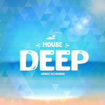 Deep House (Sample Pack WAV/MIDI/Massive Presets)