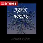 Tropic Winter