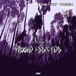 Groove Addicted EP