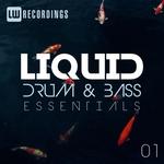 Liquid Drum & Bass Essentials Vol 01