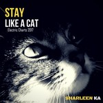 Stay Like A Cat