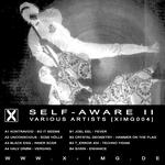 Self-Aware II