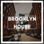 Brooklyn & House Vol 1
