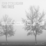 JOHN O'CALLAGHAN - Two Trees (Front Cover)