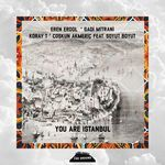 You Are Istanbul #1
