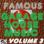 Famous Garage House Music Vol 3 (DJ Megamix)
