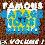 Famous Garage House Music Vol 1 (DJ Megamix)