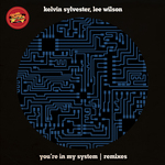 You're In My System (Remixes)