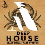 Deep House: Stabs, Organ Pads & Strings (Sample Pack WAV/MIDI)