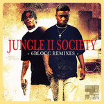 VARIOUS - Jungle II Society (Front Cover)