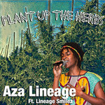 Plant Up The Herbs