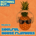 Nothing But... Soulful House Flavours Vol 1