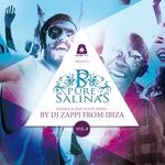 Pure Salinas Vol 8 (Lounge & Deep House Mixed)