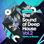 The Sound Of Deep House Vol 2 (Sample Pack WAV/APPLE/LIVE/REASON)