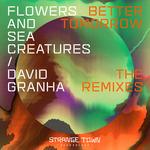 Better Tomorrow (The Remixes)