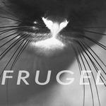 Frugel