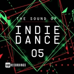 The Sound Of Indie Dance Vol 05