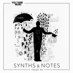 Synths And Notes 36