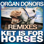 Ket Is For Horses