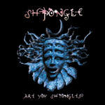 Are You Shpongled? (2017 Remaster)