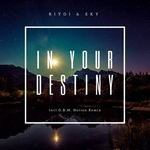 In Your Destiny