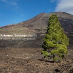 Arboreal Summer Vol III