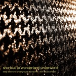 Shortcut To Wonderland Underworld: Deep Electronic Underground Dub Techno & Chill House Ambient (unmixed Tracks)