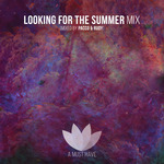 AMH Looking For The Summer Compliation + Mix (unmixed tracks)