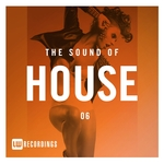 The Sound Of House Vol 06