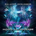 Modular Universe