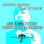 Love Is Here To Stay (Terry Hunter Remixes)
