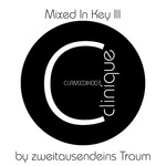 Mixed In Key III (unmixed tracks)