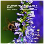 Evolved Progressions 6