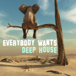 VARIOUS - Everybody Wants Deep House (Front Cover)