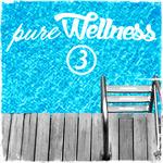 Pure Wellness 3