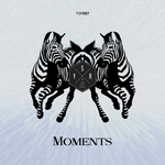 VARIOUS - Moments (Front Cover)