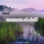 Moment Of Chill Vol 3 (Nothing But Wonderful Electronic Chill Out Music)