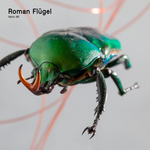 Roman Flugel/Various: Fabric 95: Roman Flugel (DJ mix)