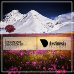 MOONHARE - Blossom EP (Front Cover)