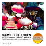 VARIOUS - Summer Collection (Front Cover)