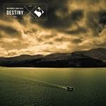 ANGEL FALLS/MAX DENOISE - Destiny (Remixes) (Front Cover)