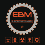 Electronic Body Matrix 2 (Explicit)