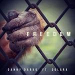 DANNY DARKO feat SOLARA - Freedom (Front Cover)